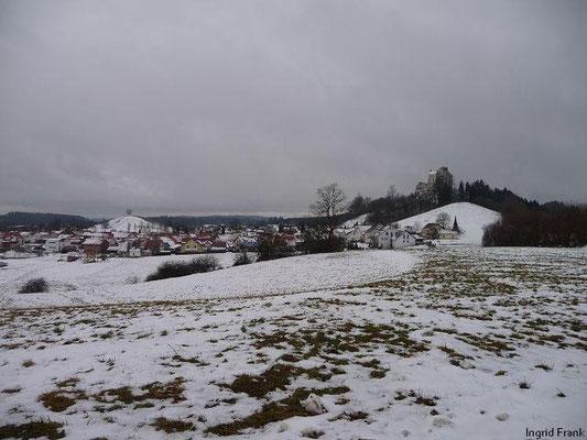 08.01.2012-Blick auf Waldburg