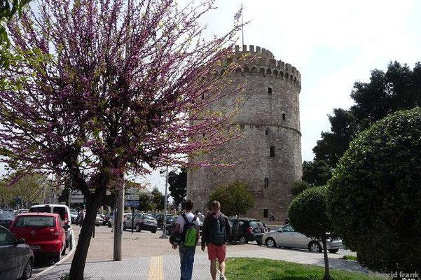 Weißer Turm. links vorne Judasbaum