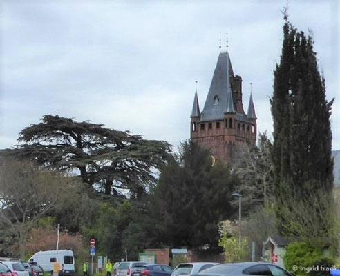 Weinheimer Schloss mit Libanon-Zeder