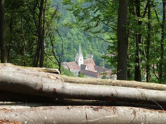 Blick auf das Kloster Blaubeuren