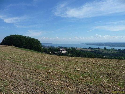 Im Linzgau - Blick auf Schloss Spetzgart und den Überlinger See