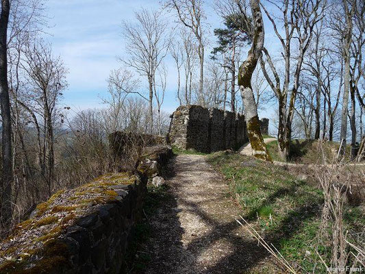 Auf der Burg Hohenhewen