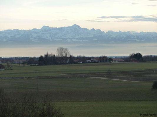 06.01.2014-Blick über den Bodensee auf den Säntis