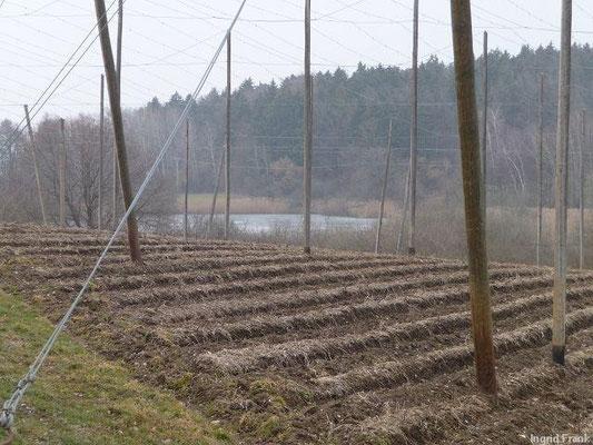 04.03.2012-Blick auf den Egelsee bei Gornhofen