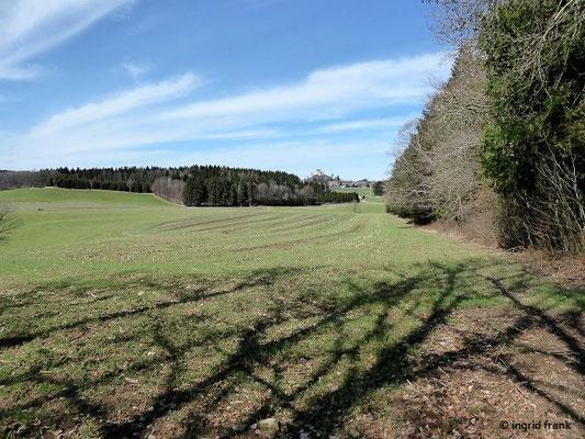 Blick zur Waldburg vom westlichen Ende des Langrains
