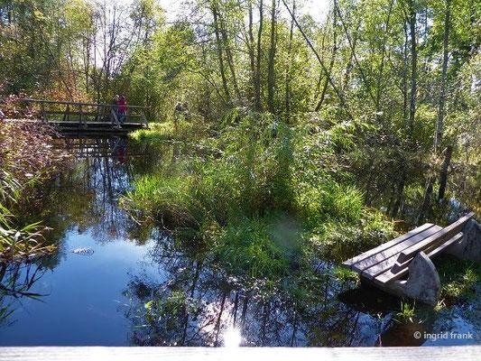 Der überflutete Zusammenfluss von Haidgauer und Dietmannser Ach zur Wurzacher Ach