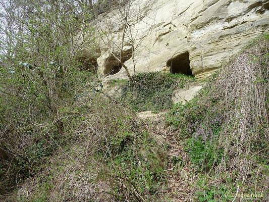 Naturschutzgebiet Aach-Tobel