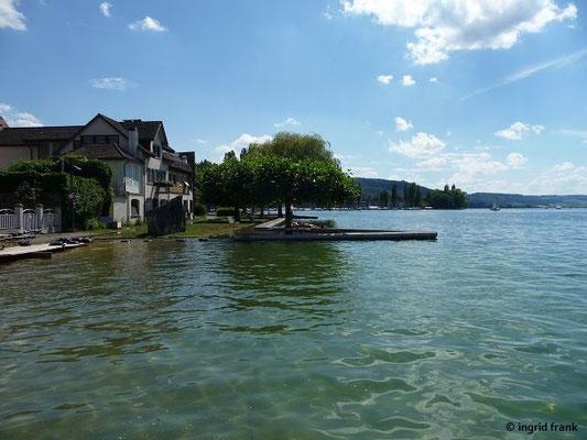Bodenseehochwasser bei Steckborn