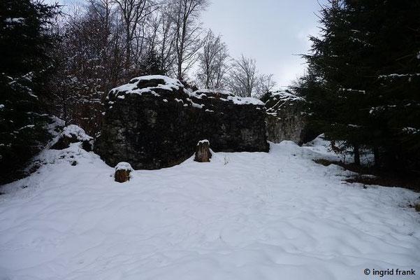 Die Ruine der Burg Neuwaldsee