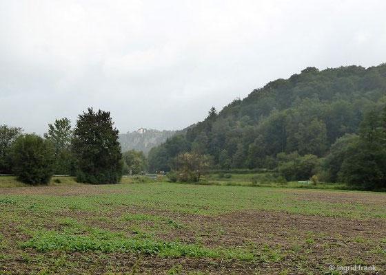 Altmühltal mit Burg Arnsberg im Hintergrund