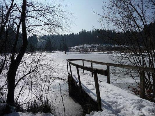 03.03.2013-Im Baienfurter Wald