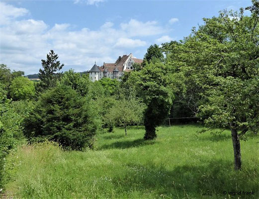 Blick zurück zum Schloss Blumenfeld