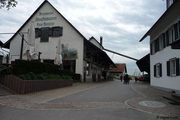 Der Brauereigasthof Schöre oberhalb von Tettnang Richtung Wangen
