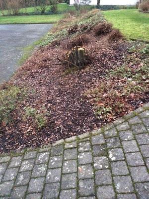 LINDNER GARTEN UND LANDSCHAFTSBAU Garten Neugestaltung, Pflege intensiver bepflanzter Hang