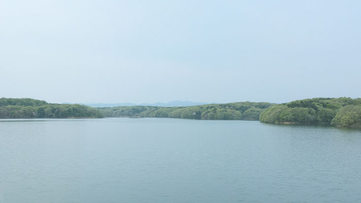 堤防から見た狭山丘陵