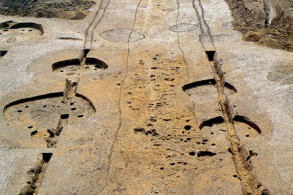 所沢市「東の上遺跡 古代道路跡」
