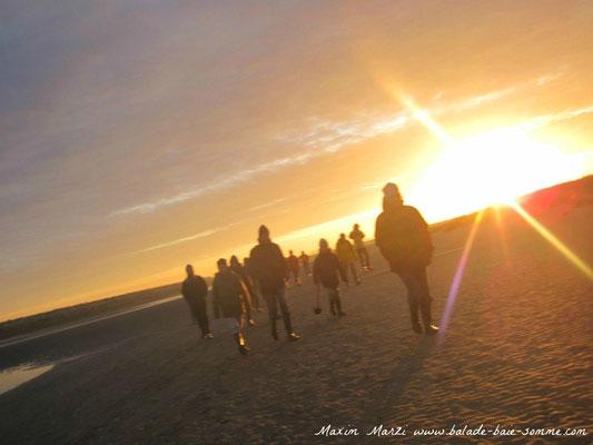 traversée baie de somme+balade+promenade+randonnée+sortie+guide nature baie de somme+le crotoy