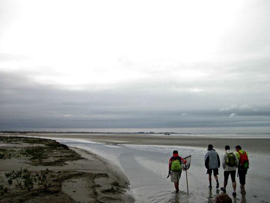 Votre guide en Baie de Somme