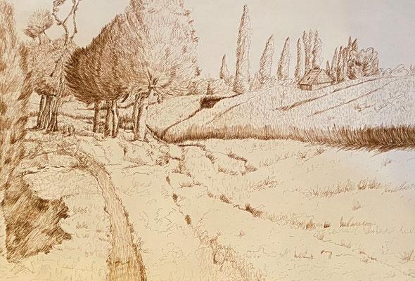 Landschaft, Shihab Vaippipadath, undatiert, Zeichnung, Papier, 63x44cm, ID1746