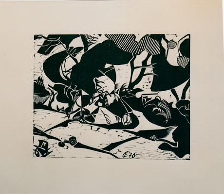Altrhein bei Ketsch, II, sw, Otto Eberhardt, 1976, Holzschnitt, Papier, 42x33cm, ID1183