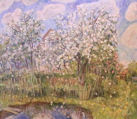 Apple Blossoms, Alexandr Zlatkin, , Öl, Leinwand, 80x70, ID1125
