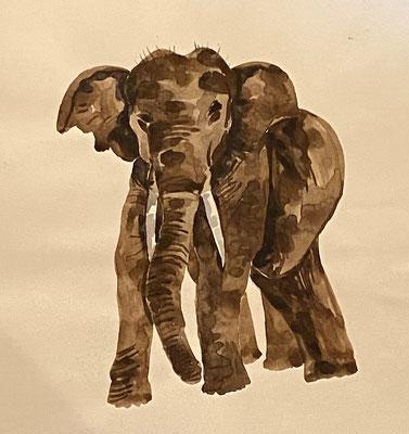 Elefant, Shihab Vaippipadath, undatiert, Aquarell, Papier, 21x27cm, ID1752