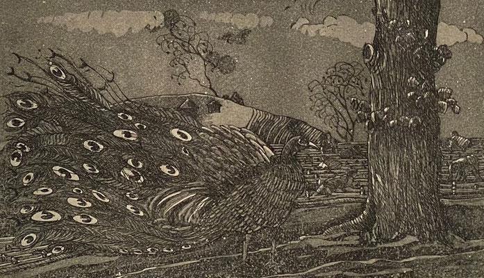 Pfau, Shihab Vaippipadath, undatiert, , Papier, cm, ID1712