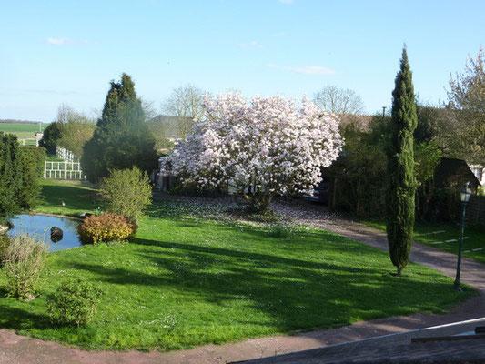 Vue sur le jardin depuis la suite Ô Clair de la Lune
