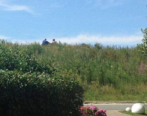 Vom gegenüberliegenden Deich (ca 30m Entfernung) haben Sie Sicht bis hin zum Strand und den berühmten Pfahlbauten.