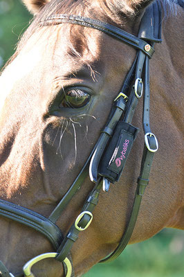 Pferde-Produkte