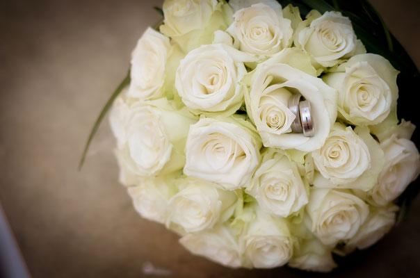 welche pflanzen passen zu rosen kombinationen mit rosen 7 tipps gartengestaltung mit rosen. Black Bedroom Furniture Sets. Home Design Ideas