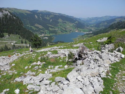 Blick zurück auf den Schwarzsee.
