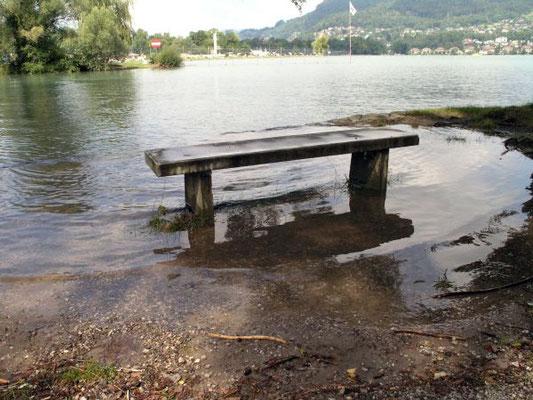 Viel Wasser am Thunersee.