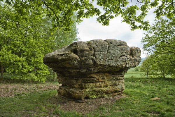 Le rocher champignon de Nommern