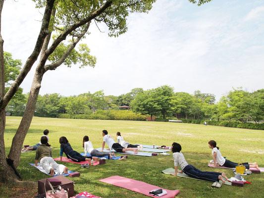 青空ヨガ 仏生山公園