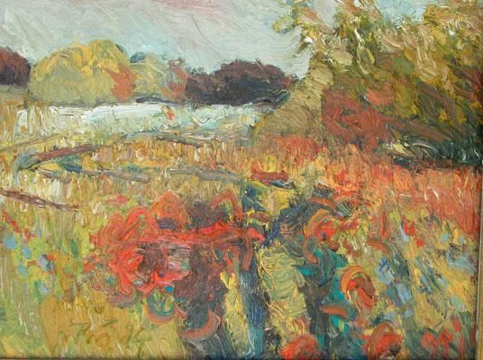 """Mohn bei Lehsten/Müritz"", 2004, Öl/Leinwand, 50x60"