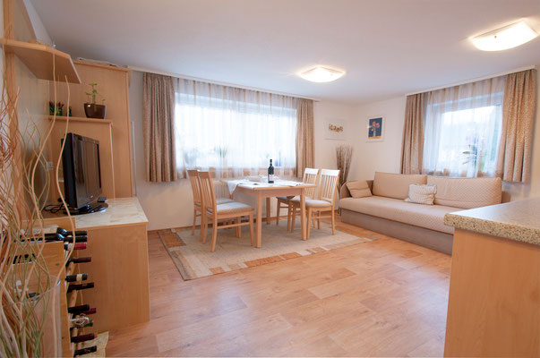 Apartment 1 Wohnraum