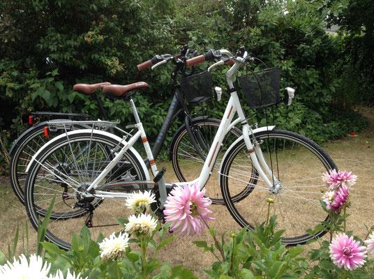 2 vélos à disposition gracieusement sur réservation ou vous pouvez venir avec les vôtres