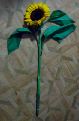 Mein Jüngster ist Landesmeister geworden und bekam diese Blume!