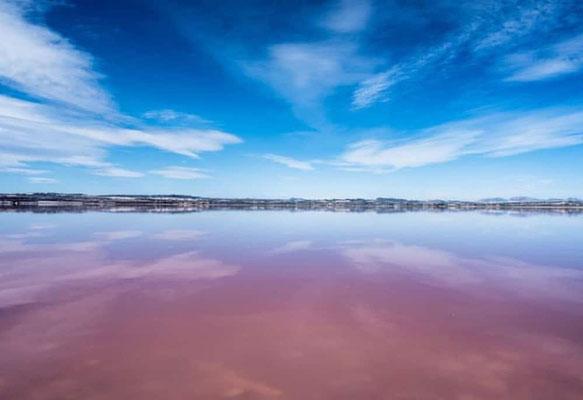 Pink Lagune / Salzsee