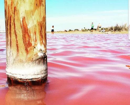 Pink Lagune