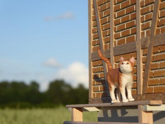 Katze von Schleich