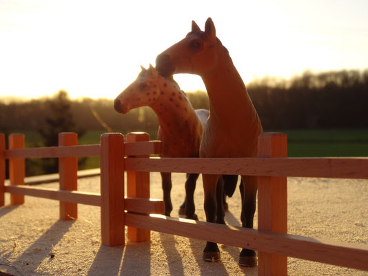 Als Pferdekoppel mit Schleichpferden. Das Holzzaun Set für Modell Pferde- Im Maßstab von Schleichpferden