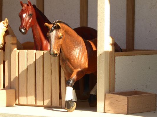 Schleich Pferd kommt aus dem Stall