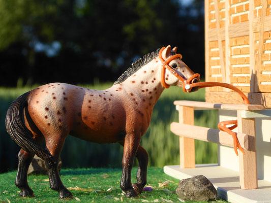Schleich Pferd bei 3zinken Sattelkammer