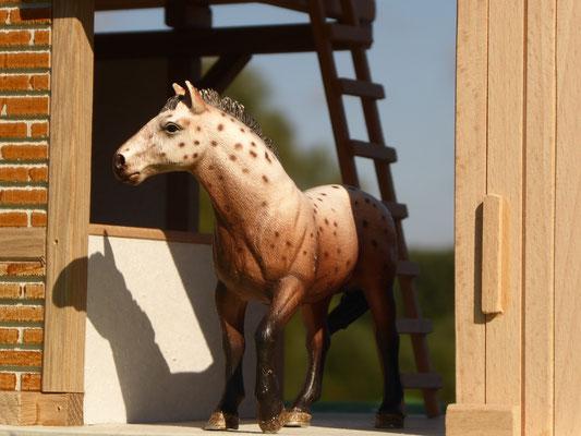 Schleich Pferd steht im Tor
