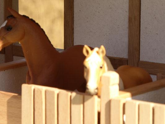 Pferde von Schleich im Holz Stall