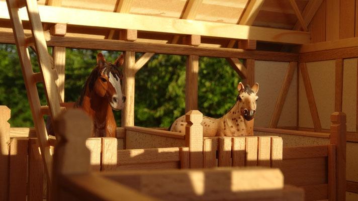 Lichtdurchfluteter Innenraum des Stalls- Pferdestall für Schleich