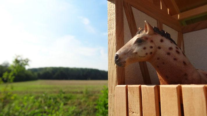 Passend für z.B. Schleich, Bullyland, Papo oder CollectA Pferde- Pferdestall für Schleich