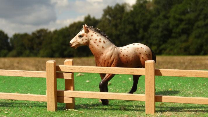 Pferdekoppel aus Buchenholz. Das Holzzaun Set für Modell Pferde- Im Maßstab von Schleichpferden